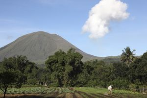 Agriculture near Kinilow town at foot of Lokon-Empung volcano, Indonesia