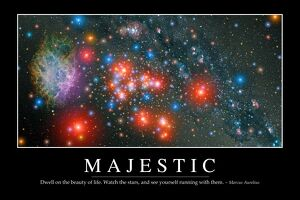 Majestic: Inspirational Quote and Motivational Poster