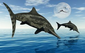 A pair of Stenopterygius ichthyosaurs jumping out of the water