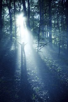 Silhouette of a man standing in the misty rays of a dark forest, Denmark