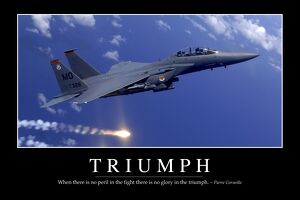 Triumph:: Inspirational Quote and Motivational Poster