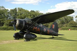 Westland Lysander warbird in World War II Royal Air Force colors