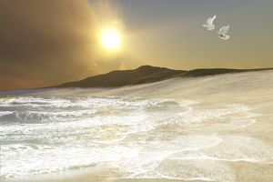 Two white doves fly over waves coming to shore on a remote beach