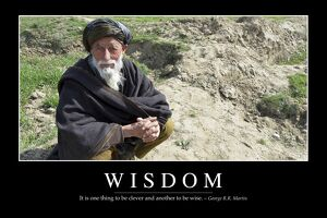 Wisdom: Inspirational Quote and Motivational Poster